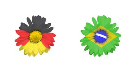 Flower Germany, Brazil flag  photo