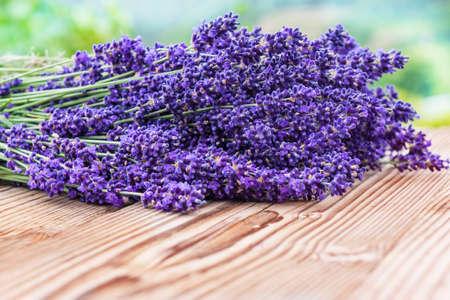 lavandula angustifolia: Lavender on wood