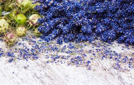 flowerpower: Lavender and Nigella