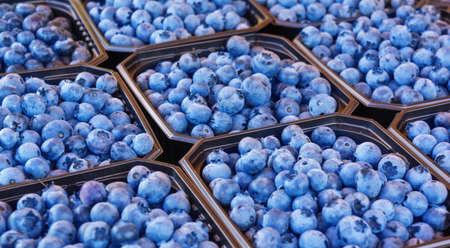 Blaubeeren zum Verkauf Standard-Bild - 31494667
