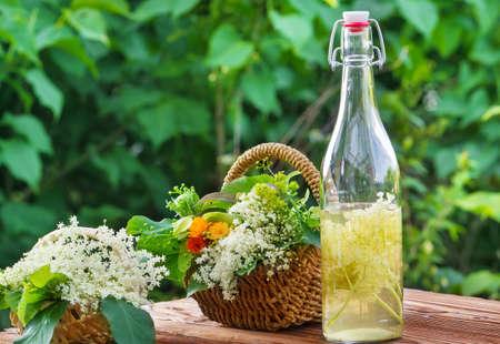 Alternative Medicine, elderflower Standard-Bild