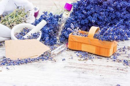 Aromatic plant, lavender photo