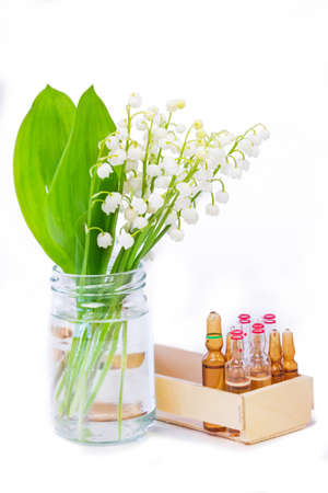 Medicinal plant lily of the valley
