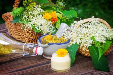 Medicinal herbs, homeopathy Stockfoto