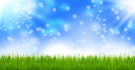 Spring meadow, easter meadow, Bokeh photo