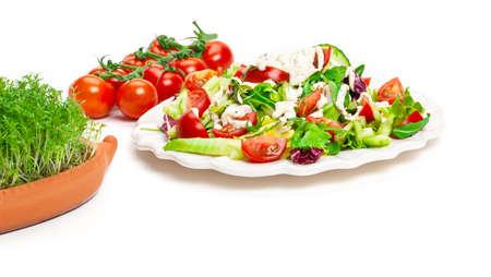 Salad, vine tomatoes, cress hedgehog Stock Photo