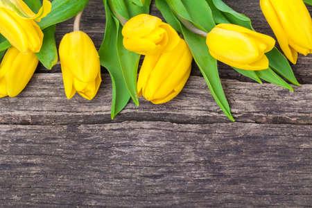 pentecost: Tulips, wooden background