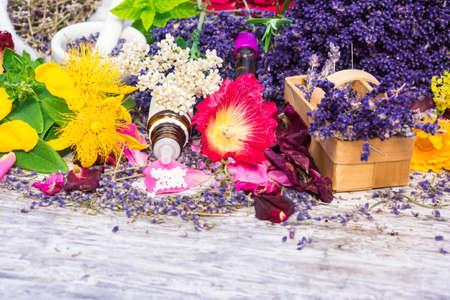 plantas medicinales: Las plantas medicinales, glóbulos, Homeopatía Foto de archivo