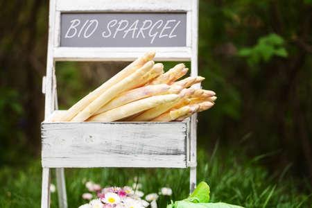 farm shop: Organic asparagus in the garden, farm shop