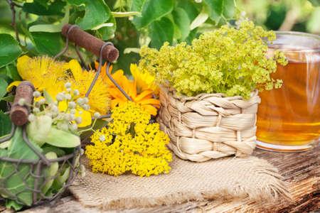 medicinal plants: Medicinal plants, gathered medicinal herbs, herbal tea Stock Photo