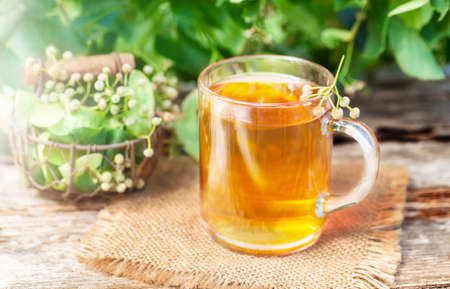 naturopathy: Lime blossom tea Stock Photo