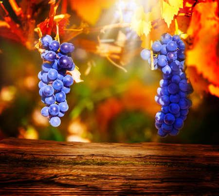 Holzbrett vor der blauen Trauben Standard-Bild - 47103616