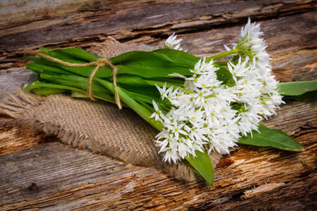 wild: Wild Garlic on old wooden board Stock Photo