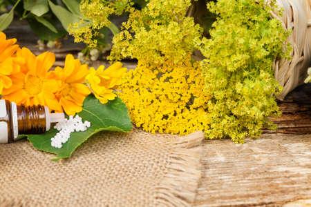 medicinal: Homeopathy, globules and medicinal herbs