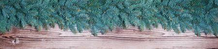 sapin: Fir sur bois