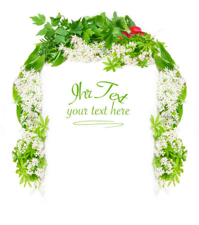 woodruff: Menu, spring herbs