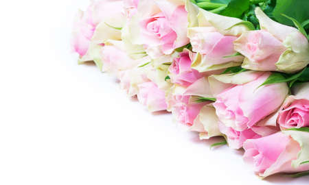 love letter: Antique pink roses, isolated on white Stock Photo