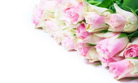 love letter: rosas de color rosa antiguos, aislados en blanco Foto de archivo