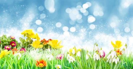 Easter, Flower Meadow in front of sky