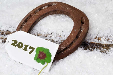 Horseshoe and Clover, Greeting Card New Year 2017 Stock Photo