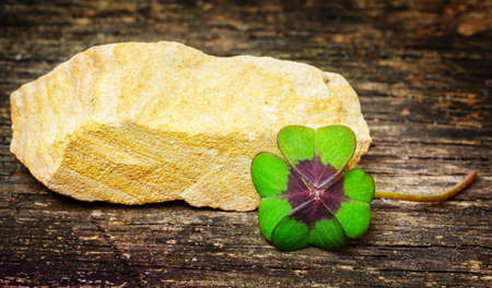 Lucky clover and lucky stone on wood