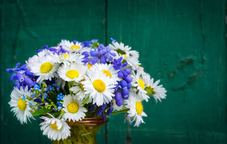 Daisies, forget-me-not and grape hyacinth - spring bouquet Stock Photo