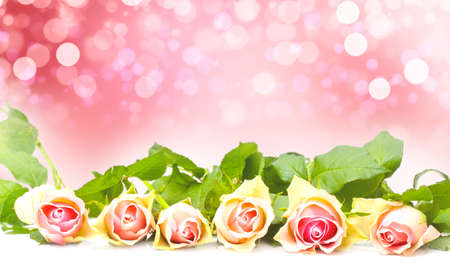 Pink Roses before Bokeh, greeting card Valentines Day Imagens