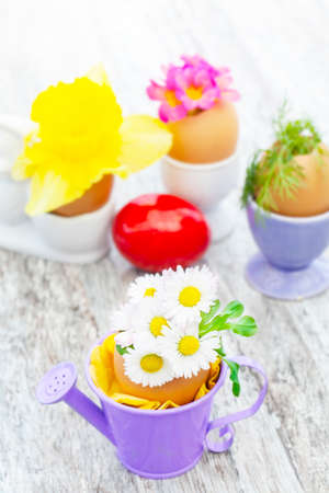 Easter decoration with daisies and other flowers  Standard-Bild