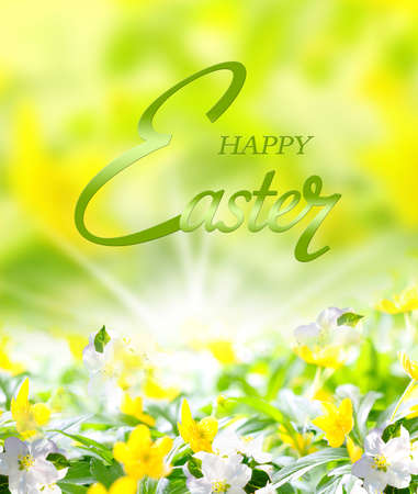 ?Happy Easter? - Easter card with yellow spring flowers