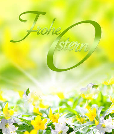 ?Happy Easter? - Easter card in German, with yellow spring flowers Standard-Bild
