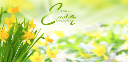 Happy Easter, Easter card with yellow flowers