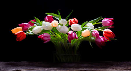 Colorful tulips in a glass vase against a black background Standard-Bild