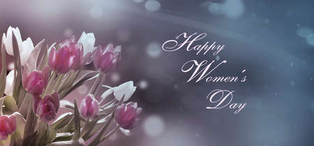 Happy Women's Day - Pink and white tulips in front of pastel  bokeh
