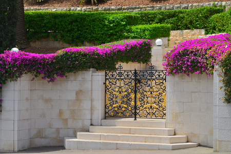 Haifa Bahai gardens metal gate and steps framed flowers photo
