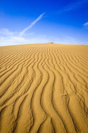 Ripple marks on sand dunes of Maranjab Desert in Iran