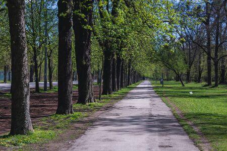 Path in Wiener Prater park in Vienna city, capital of Austria