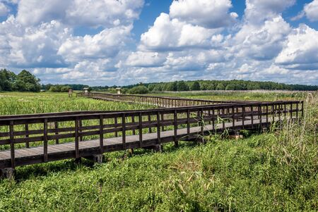 Tourist wooden pathway in Narew National Park, close to the park authorities headquarters in Kurowo village, Poland
