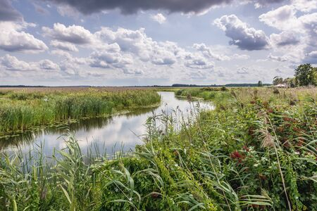 River Narew seen from pathway for tourists in Narew National Park, close to the park authorities headquarters in Kurowo village, Poland