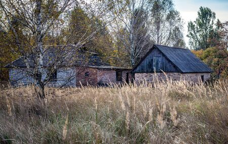 Brick house in small abandoned village called Stechanka in Chernobyl Nuclear Power Plant Zone of Alienation, Ukraine