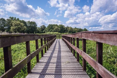 Wooden pathway for tourists in Narew National Park, close to the park authorities headquarters in Kurowo village, Poland