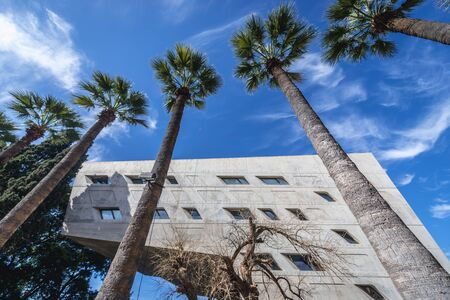Palm trees in front of Issam Fares Institute for Public Policy and International Affairs, part of American University of Beirut on Bliss Street in Beirut, Lebanon 写真素材