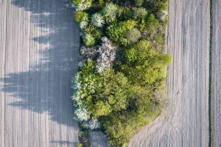 Drone view on a fields near Stary Konik, small village located between Warsaw city and Minsk Mazowiecki town in Poland