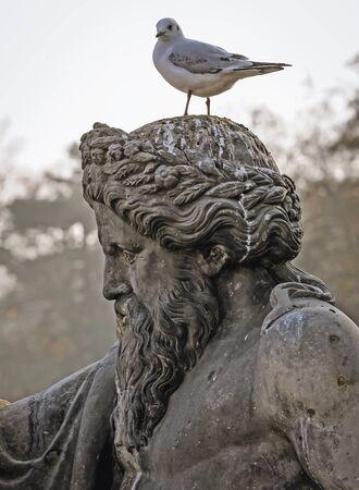 Bird on a sculpture in Royal Lazienki park in Warsaw city, Poland