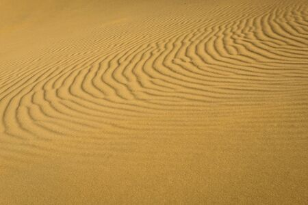 Pattern of sand dune of Maranjab Desert in Iran