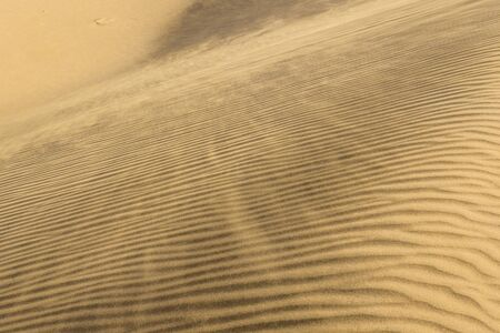 ripple marks on sand dune of Maranjab Desert in Iran
