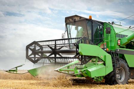 cosechadora: Una cosechadora trabaja en un campo de trigo