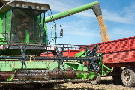 cosechadora: Inundan soja remolque de tractor