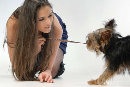 pulling hair: girl and dog
