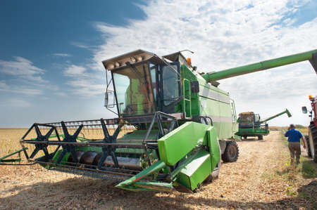 cosechadora: Un agricultor combina un campo de soja Editorial