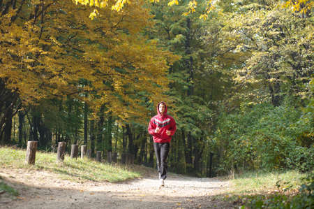 running  the autumn forest photo